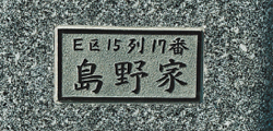 sousyoku34